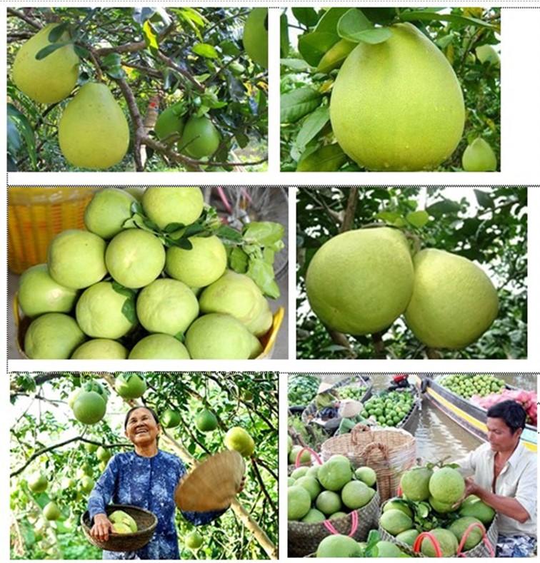 Đặc sản ẩm thực hương vị quê hương đất Tổ